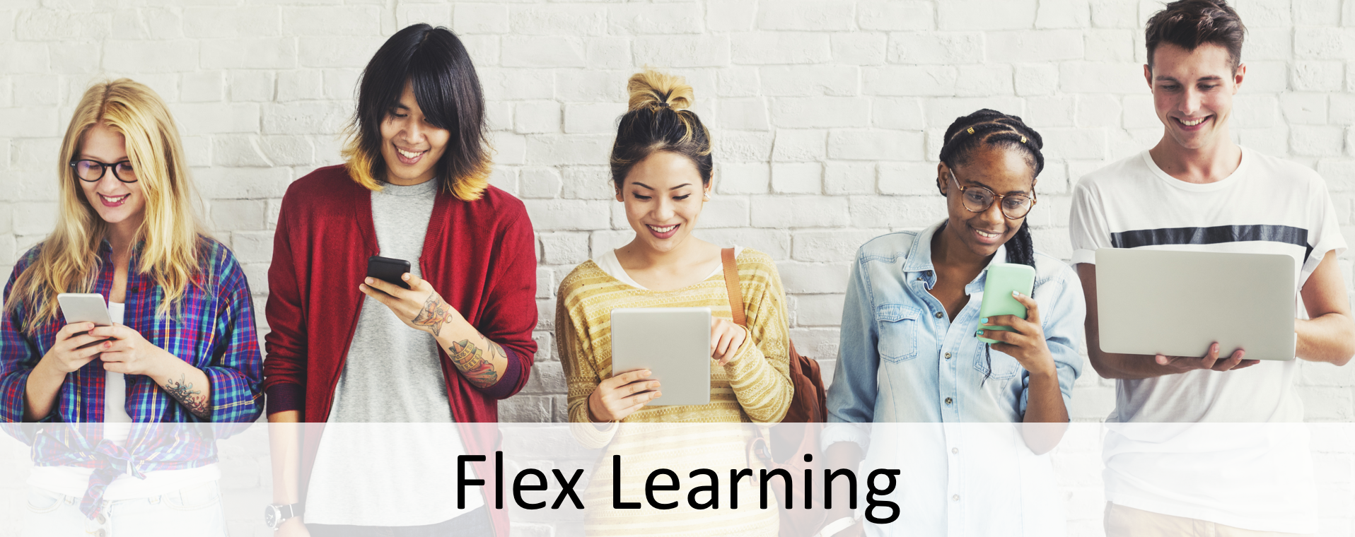 Flex Learning Banner