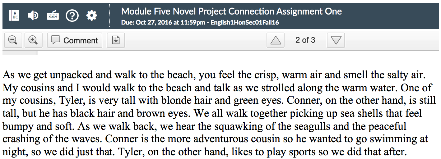 Nicholas H Writing Project